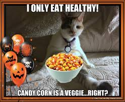 Halloween Candy Meme - the cat on my head does friendly fill ins question about candy corn