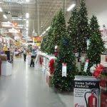 trees for sale in bozeman within home depot trees