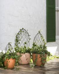 What Is A Topiary Twist Topiary Frame Topiary Forms Spiral Topiary Wire Frame