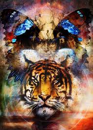 tiger and butterfly wings with painting collage and