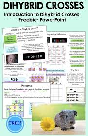 5757 best secondary science lessons images on pinterest life