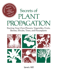 secrets of plant propagation starting your own flowers