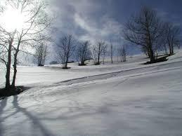 opulenza significato sognare la neve significato numeri da giocare e cabala
