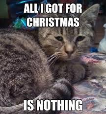 Depressed Drinking Meme - depressed cat memes image memes at relatably com