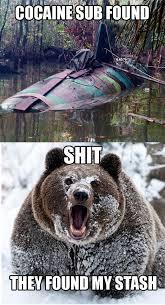 Bear Cocaine Meme - image 103669 cocaine bear know your meme
