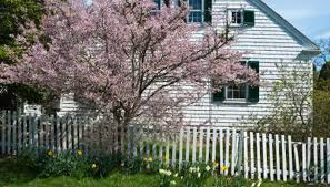 how to landscape a cape cod house garden guides