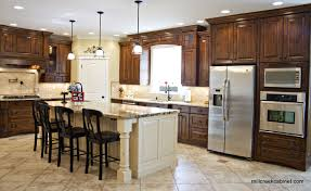 Kitchen Idea Pictures Kitchen Design Ideas Pictures Discoverskylark