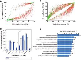 dna methylation signature reveals cell ontogeny of renal cell