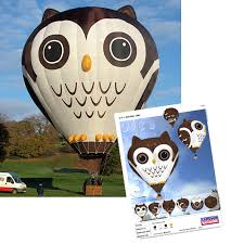 owl balloons owl hot air balloon cameron balloons