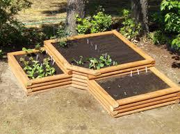 intricate raised bed vegetable garden designs raised gardens love