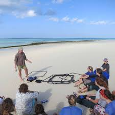 tanzania zanzibar coastal ecology and natural resource management