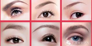 eyebrow embroidery eyeliner lip embroidery courses singapore