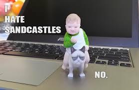 Success Cat Meme - success kid on grumpy cat 3d print meme cgtrader