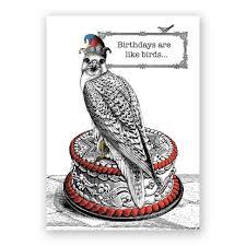 birthdays are like birds birthday card u2013 the mincing mockingbird