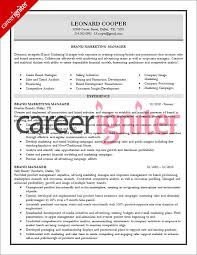 It Director Resume Examples by 7 Best Producer Resume Images On Pinterest Career Resume