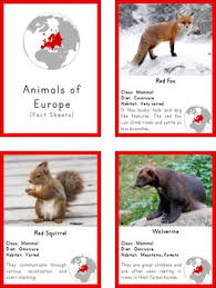 montessori animals of europe 3 part cards and fact cards tpt
