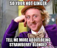 Blonde Meme - so your not ginger tell me more about being strawberry blonde