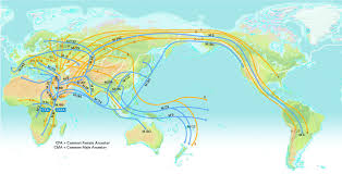 Haplogroup World Map by Human Migration National Geographic Society