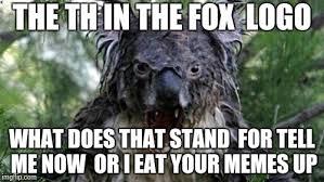 Angry Koala Meme - angry koala memes imgflip
