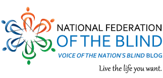 World Access For The Blind Voice Of The Nation U0027s Blind Blog National Federation Of The Blind