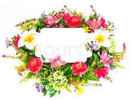 decorative flower decorative colorful flower arrangement on white background with