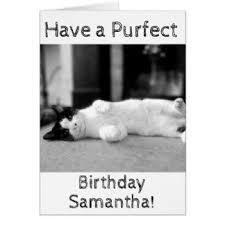 cat lady birthday cards cat lady birthday greeting cards cat