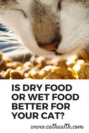 learn how to choose between wet cat food or dry cat food based