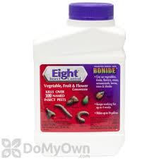 Insecticide For Vegetable Garden by Bonide Eight Insect Control Vegetable Fruit And Flower Concentrate