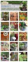 429 best container gardening images on pinterest bricolage