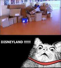Disneyland Meme - 15 cat disneyland meme pmslweb