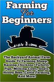 Backyard Cattle Raising Farming For Beginners The Backyard Animal Farm Guide To Farming