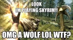 Meme Skyrim - look im playing skyrim omg a wolf lol wtf skyrim meme quickmeme