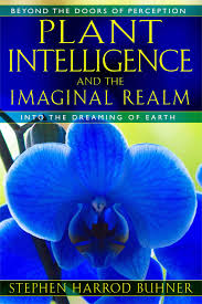 plant intelligence and the imaginal realm beyond the doors of