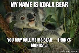 Koala Bear Meme - my name is koala bear you may call me ms bear thanks monica