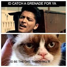 my favorite grumpy cat memes grumpy cat humor grumpy cat and