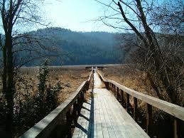 Radio Flyer Spring Horse Liberty Spokane County Park Liberty Lake Wa Liberty Lake Parks And