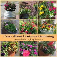 pictures of beautiful gardens with flowers crazy about container gardening www thefarmgirlgabs com