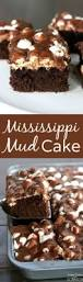 best 25 choclate cake recipe ideas on pinterest chocolate cake