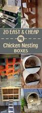 best 25 diy chicken coop ideas on pinterest chicken coops