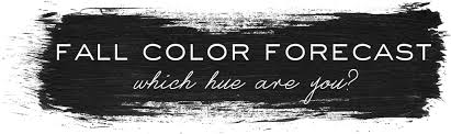 color forecast fall color forecast which hue are you u2013 buru