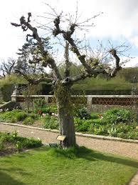 Groombridge Place Floor Plan by Groombridge Place Sayes Court London U0027s Lost Garden