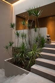 Interior Decoration In Home Best 25 Interior Garden Ideas On Pinterest Atrium Garden House