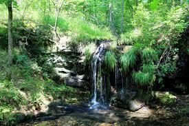 Fall Creek Falls Map Lake Catherine Falls Branch Trail Falls Creek Falls 2 Mi