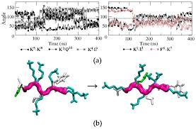 molecules free full text rational design of cyclic
