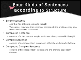 english review of types of sentences free homework help