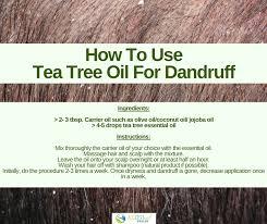 how to use tea tree for dandruff 2 best recipes enjoy
