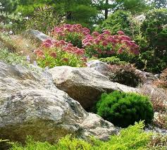 Rock Garden Landscaping Ideas Rock Garden Contemporary Landscape New York By Ldaw