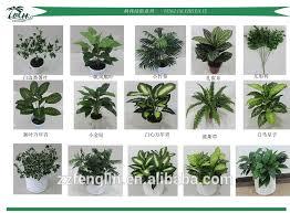 decorative indoor plants indoor decorative plants bm furnititure