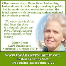 Panic Attack Meme - the anxiety summit the anxiety summit amazing aminos acids
