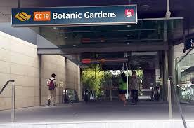 Botanic Garden Mrt Top 10 Survival Tips For Lky School Students